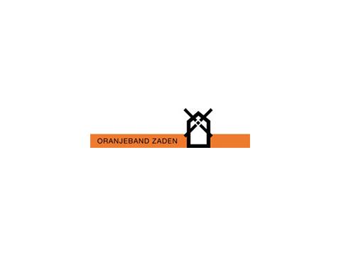Oranjeband